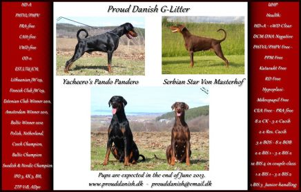 Proud Danish G litter