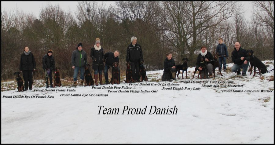 Proud Danish Puppy day Feb. 2013